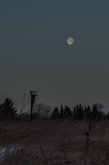 Moon over Birdhouse_3446.jpg by Mully410 * Images