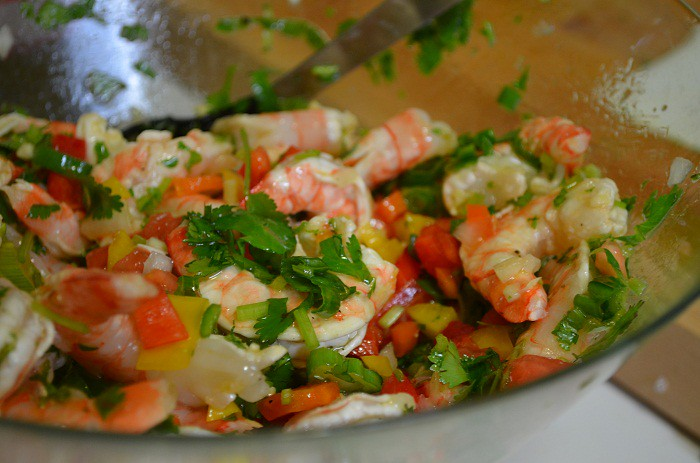 shrimp with cilantro on top and all the ingredients