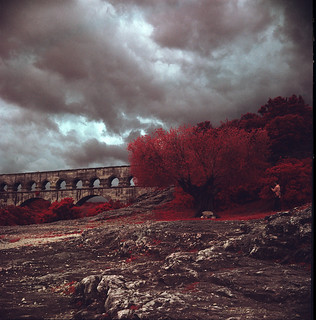 Another Roman Infrared