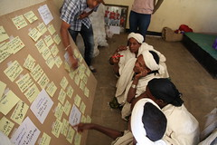 Activities conducted as part of NBDC innovation platform work in Fogera (photo credit: ILRI/Apollo Habtamu).