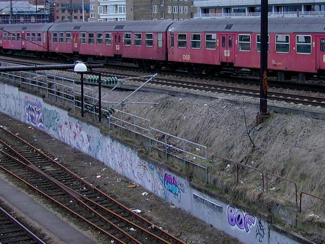 DSCN6439