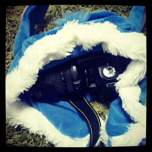 これで雪からカメラを守ります。