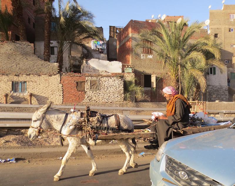 Egypt2-11