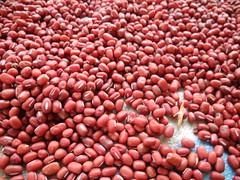 自然風乾的紅豆。