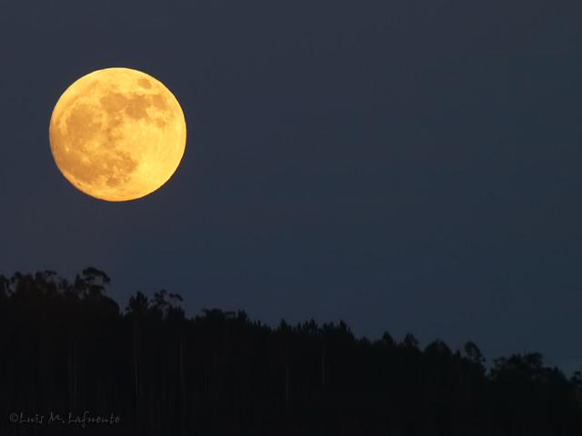 Luna llena de Diciembre 2010