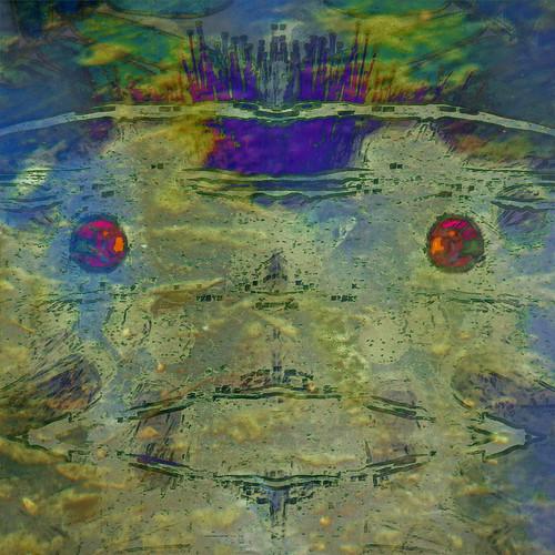 abstract fairytale photomanipulation square digitalart frog hypothetical vividimagination arteffects sharingart awardtree exoticimage