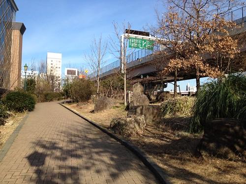 浜町公園から見る首都高速6号向島線 by haruhiko_iyota