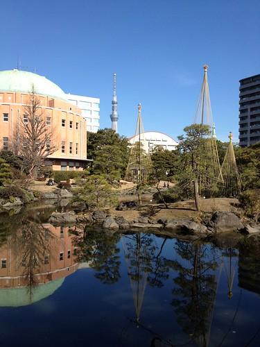 旧安田庭園から見える東京スカイツリー by haruhiko_iyota