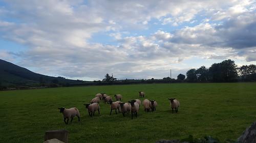 Ballmurphy, Ireland