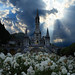 The Miracle of Lourdes by Frank 