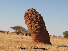 soil, sand, mound-building termites, geology, natural environment, landscape, monolith, rock,