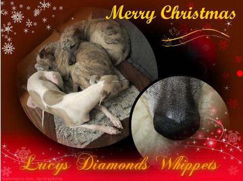 Weihnachten2012PetraLucysDiamonds