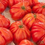 Coeur de Boeuf Tomatoes - Marche du Pont de l'Alma, Paris