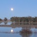 Moonrise on the Yolo Bayou