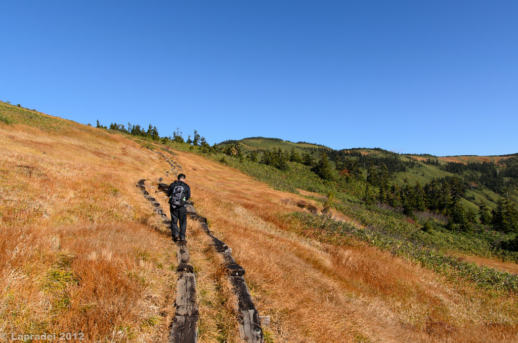 草紅葉の稜線