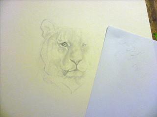 tiger wip #2
