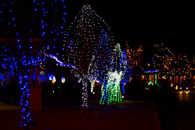 LaSalette Shrine MA Christmas