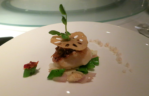 Seared Diver Scallop