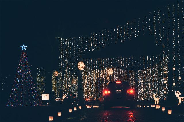 Galaxy of Lights