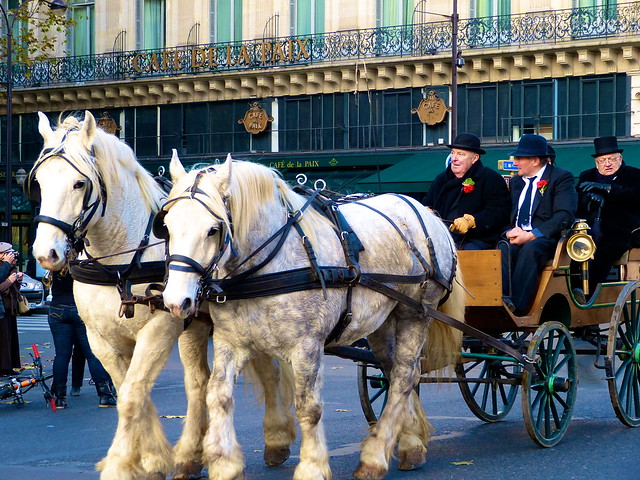 Paris_Carriage