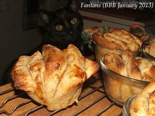 fantans (BBB January 2013)