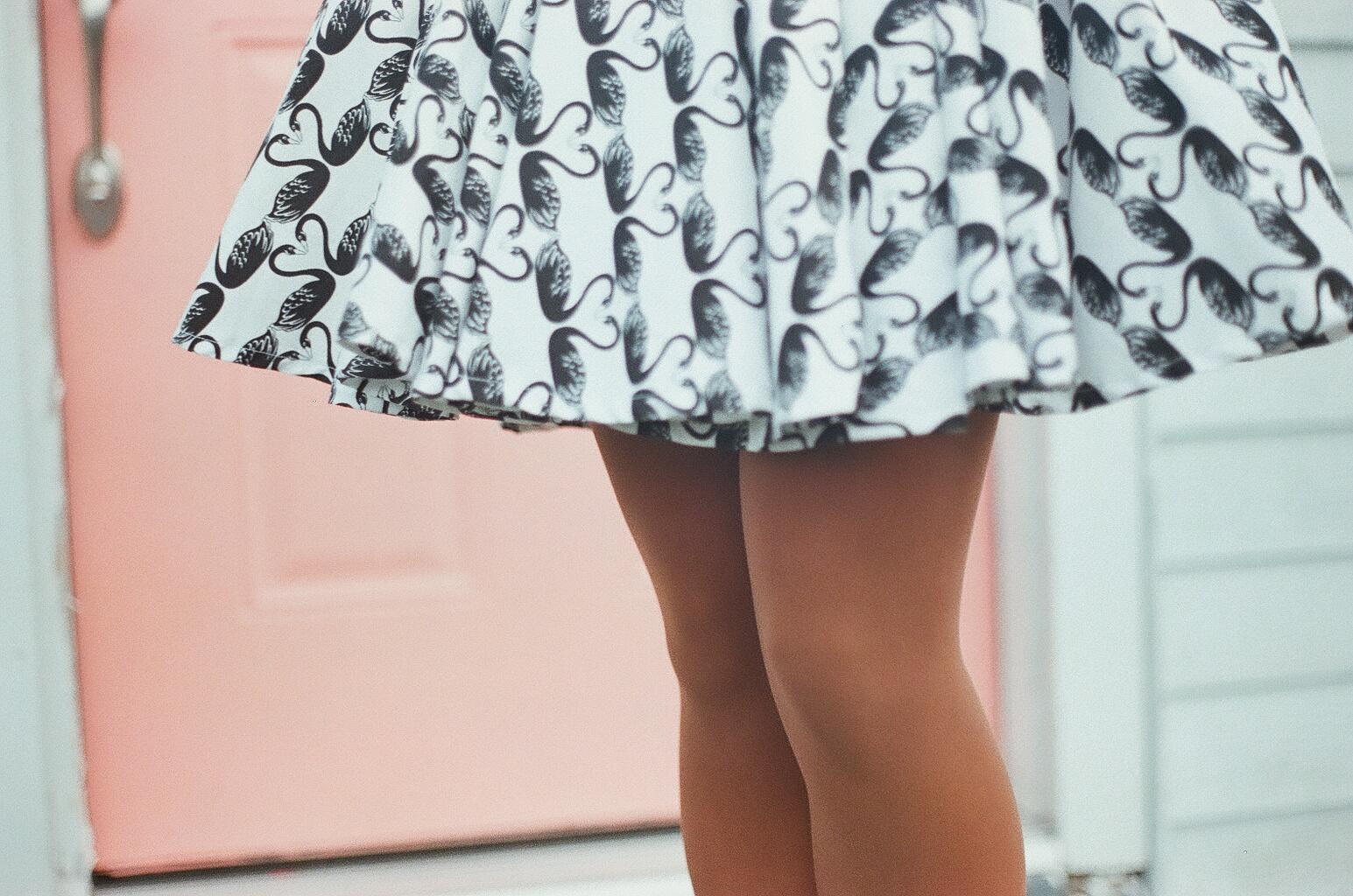 the swan dress