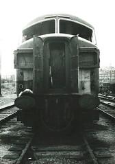 Class 41 (original)