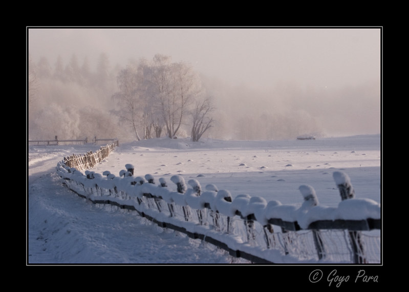 Nieve en la valla