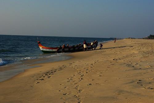 India, barco con pescado