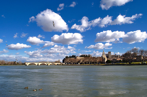 Avignon from the island of Barthelasse