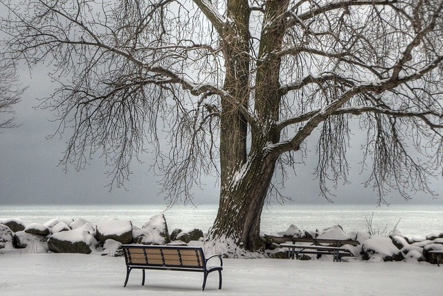 HDR Dempster Street Beach, Evanston, Snow Cover, Lake ,Tree and Bench, February 4, 2013 99 4x6 bpx