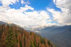 Sequoia National Park - Moro Rock