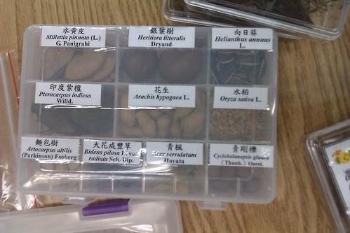 台大植物標本館種子盒