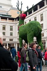 Reno gigante en Covent Garden en Navidad