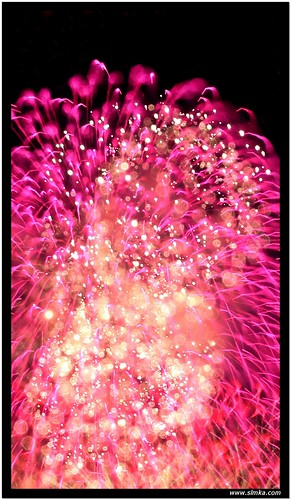 RWS Fireworks [Red Flower]