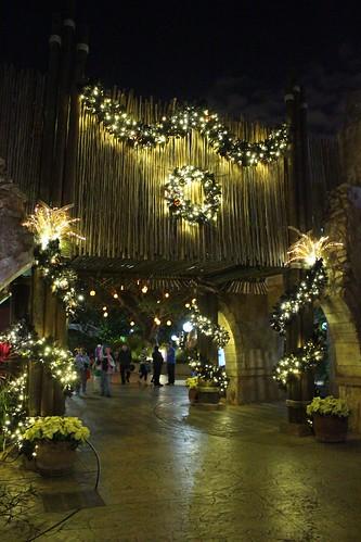 Busch Gardens Christmas Town Tampa.First Ever Christmas Town Shines At Busch Gardens Tampa