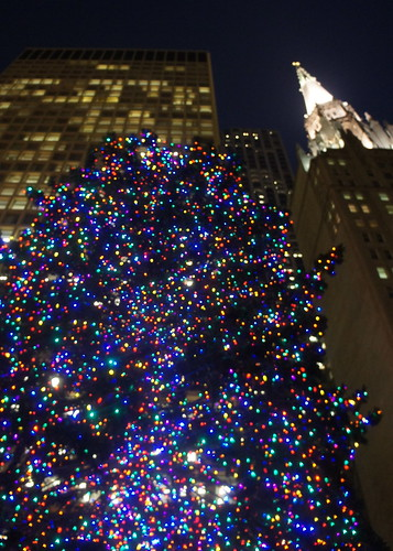Daley Plaza Christmas Tree