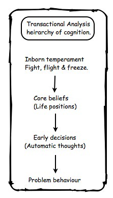 TA heirarchy of cognition Jpeg
