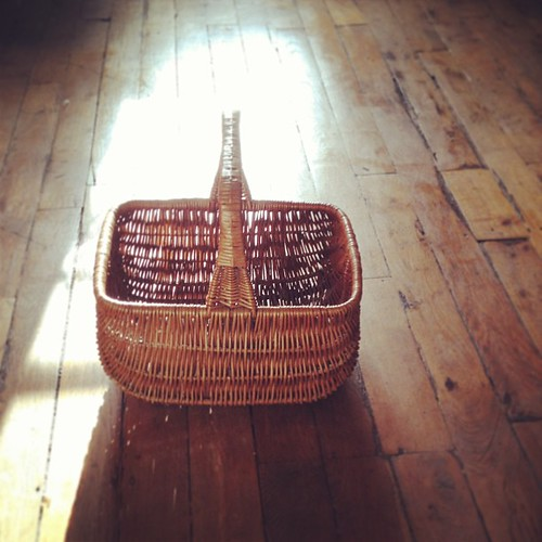 My new wonderful shopping basket by la casa a pois