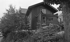 Rosenhaug - Gamlestuen (1982)