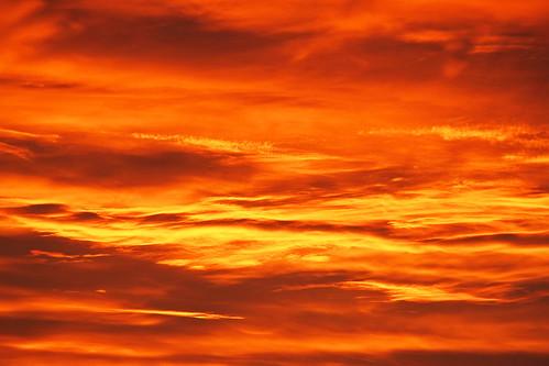 sunset eos sonnenuntergang sundown ulm münster vogel 500d
