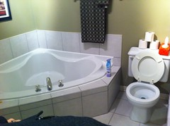 Original bathtub and toilet