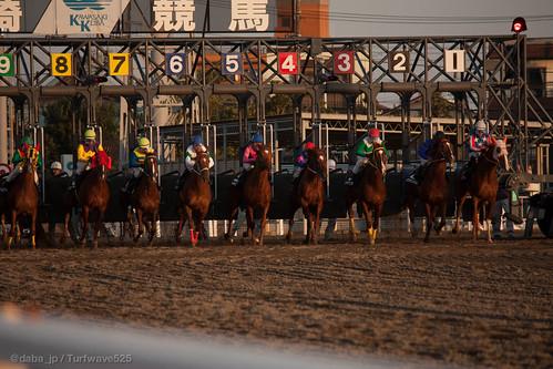 20130102 ゴールデンホース賞 / Golden Horse Sho