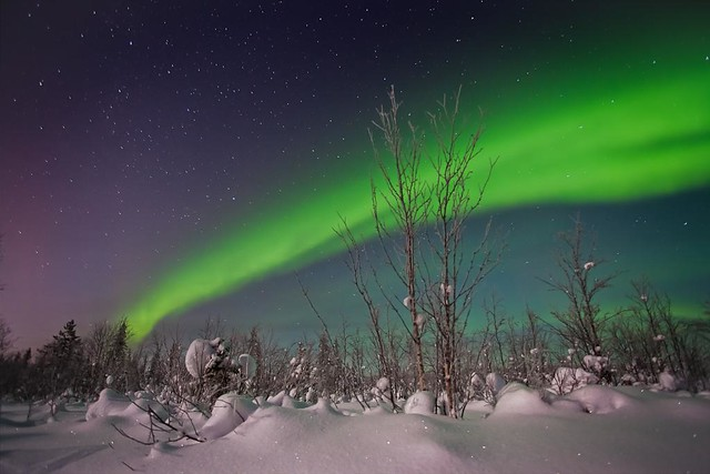 Kiruna Northern Lights