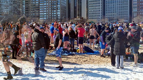 Polar Bear Plunge by dharder9475
