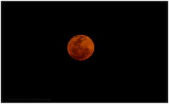 Mahakumbh full moon