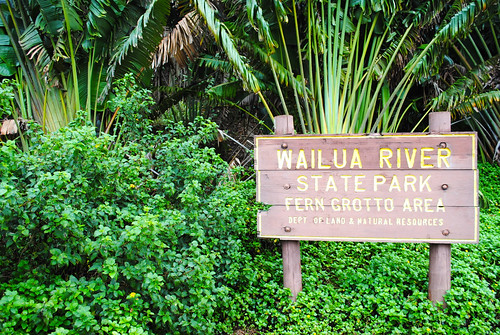 Wailua River State Park - Fern Grotto Area photo by Keira-Anne and flickr.com