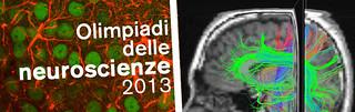 Olimpiadi delle Neuroscienze