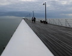on and around shorncliffe pier, july 2016 (27)
