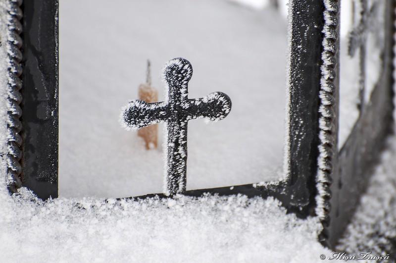 cu zăpadă